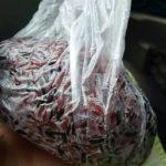 紫米のおむすび